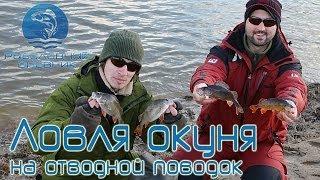 Отводной поводок на окуня и щуку : Рыболовный дневник