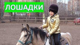 Учимся кататься на лошади