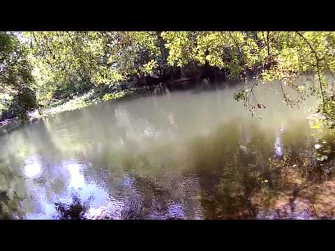 Fishing at Gore's Landing, Ocklawaha River, Florida