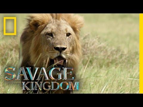 Execution or Exile?   Savage Kingdom