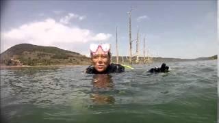 Enormes silures et sandres monstrueux en plongée au Salagou avec sepiou plongee