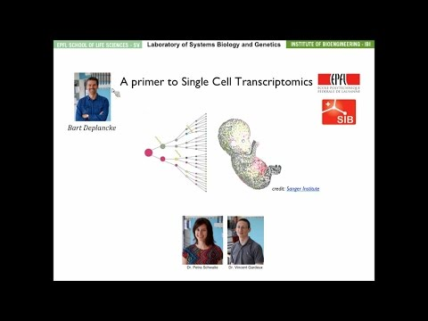 Bart Deplancke: A primer to single cell gene expression analyses