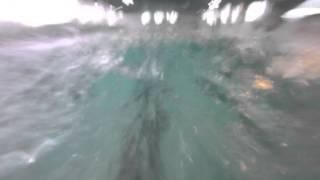 Стиль баттерфляй(плавание)