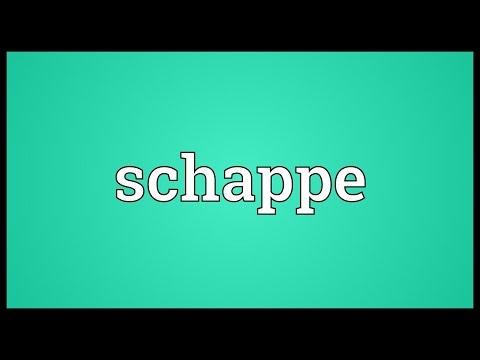 Header of schappe