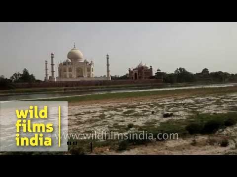Taj Mahal in Agra on the banks of Yamuna river