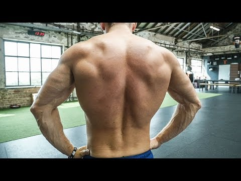 The Five Best Exercises for any More powerful Back