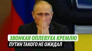 Звонкая оплевуха Кремлю. Путин такого не ожидал