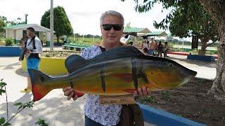 Рыбалка на амазонского окуня
