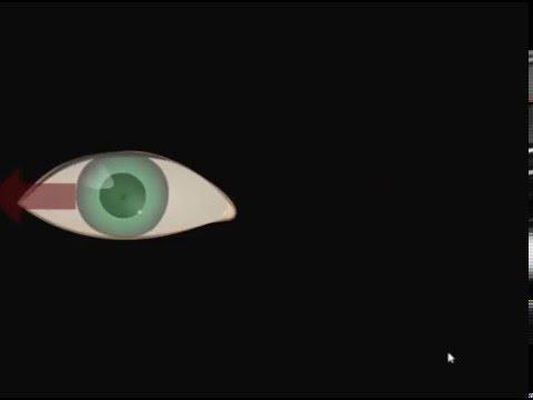 6 Упражнение - Круговые движение глазами