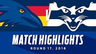 Adelaide v Geelong Highlights   Round 17, 2018   AFL