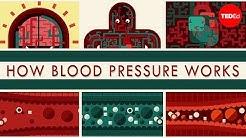 How blood pressure works - Wilfred Manzano
