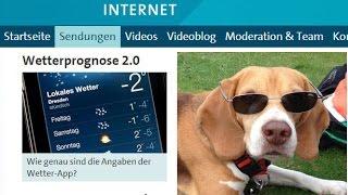 Beagle Barnie Bei Ard-ratgeber Internet Vom 19.07.2014