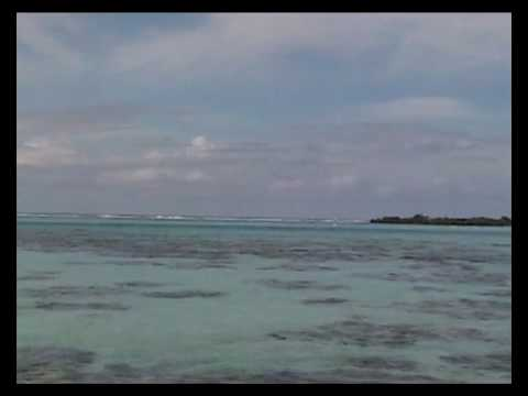 The pristine Lagunes of Moorea in French Polynesia!