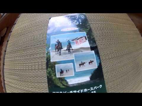 Iejima horseback riding in the Ocean