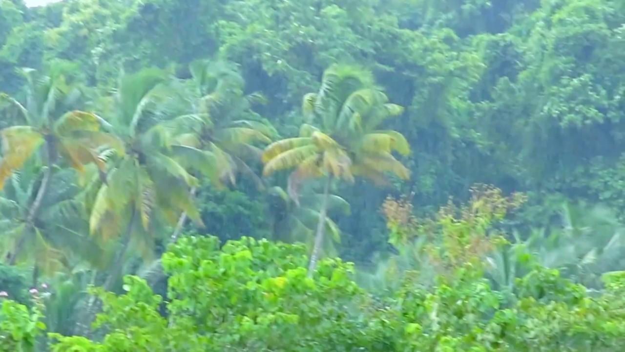 Kerala Beauty On Rainy Season