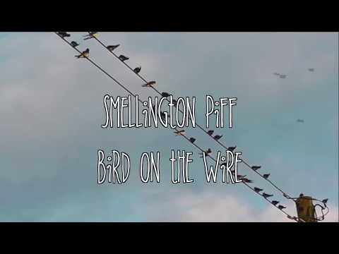 Smellington Piff - Bird on the Wire (Prod. Illinformed)