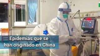 Conoce las epidemias que se han originado en China