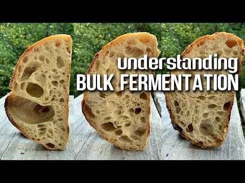 Understanding BULK fermentation. The KEY step for OPEN CRUMB and FLAVOR development. | JoyRideCoffee