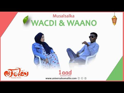 Musalsalka Wacdi & Waano 2021-Q1AAD