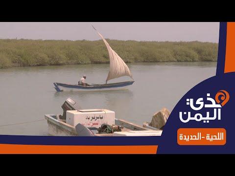 هذي اليمن | اللحية - الحديدة