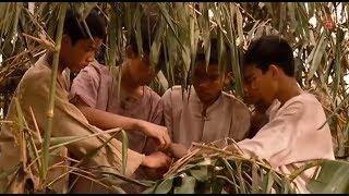 Phim hành động Mỹ hay nhất - Biệt đội chống buôn lậu - Thuyết Minh (Full HD)