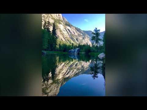 Fish Camp & Yosemite National Park