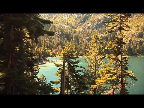 Etherwood - Sunlight Splinters (Official Video)