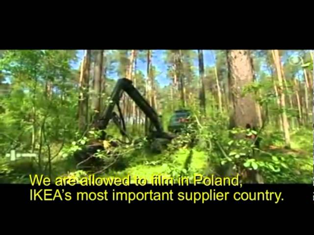IKEA subsidiary clear-cuts HCV forest in Karelia with FSC approval