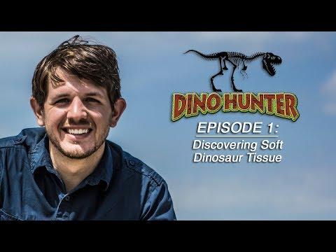 DHB101 Discovering Soft Dinosaur Tissue