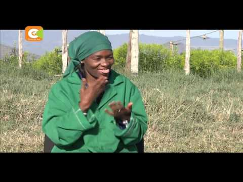 Deaf workers at a Naivasha flower farm praised for resilience and resourcefulness
