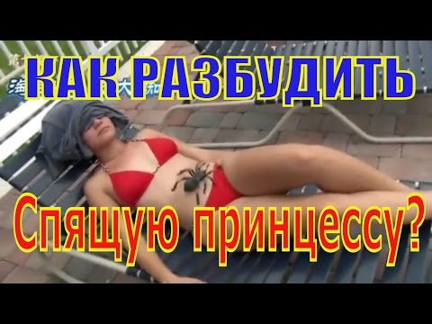 Эротика - Секс Видео ХХХ