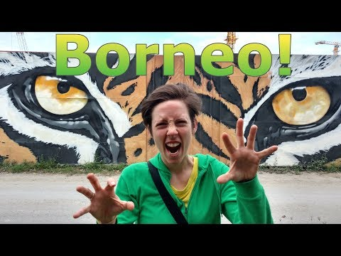 Borneo! | Exploring Kota Kinabalu!