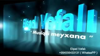 Elsad Vefali - Nece Inandim (Official Audio 2013)