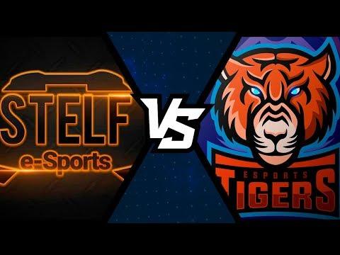 TEAM STELF vs TIGERS - TORNEIO SQUAD PS4 - FINAL