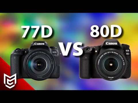 Canon 77D mi Canon 80D mi? - Mert Gündoğdu 📸