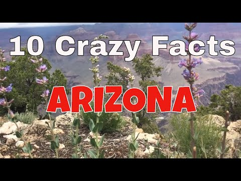 10 Crazy Facts About Arizona