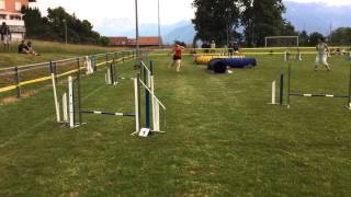 Championnat Romand 2015 - Agility finale - Alicia et Ewan - 1ers
