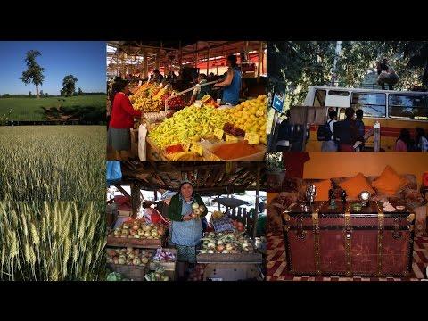 3. ΧΙΛΗ - CHILE: Punta Arenas, Puerto Natales, Puerto Montt, Puerto Eden, Chiloe, Temuco (video)
