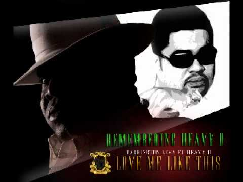 Barrington Levy & Heavy D - Love Me Like This