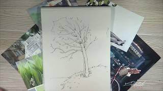Быстрые зарисовки деревьев [Sketch School] -  11 урок