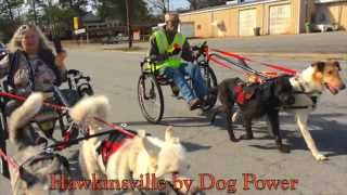 Hawkinsville by Dog Power