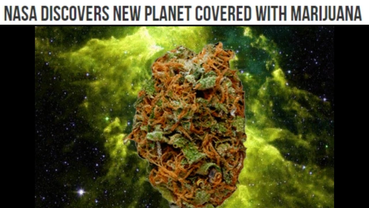 nasa discovers marijuana planet