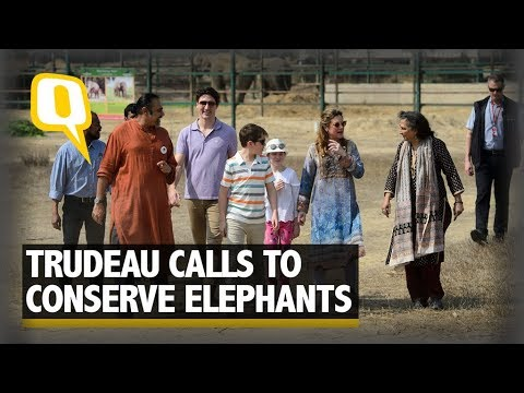Watch: Trudeau Family Feeds Jumbos, Calls to Conserve the Species