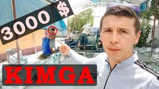 OYIGA 3000 $ PUL TOPISH MUMKUN