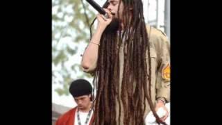 Damian Marley - Born to be wild