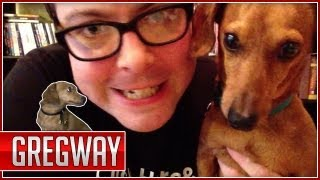 Portillo The Wiener Dog's Origin: Gregway Ep. 2