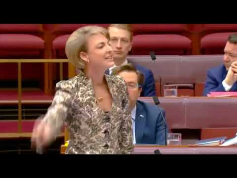 Michaelia Cash grilled by the Senate over lies and leaks.