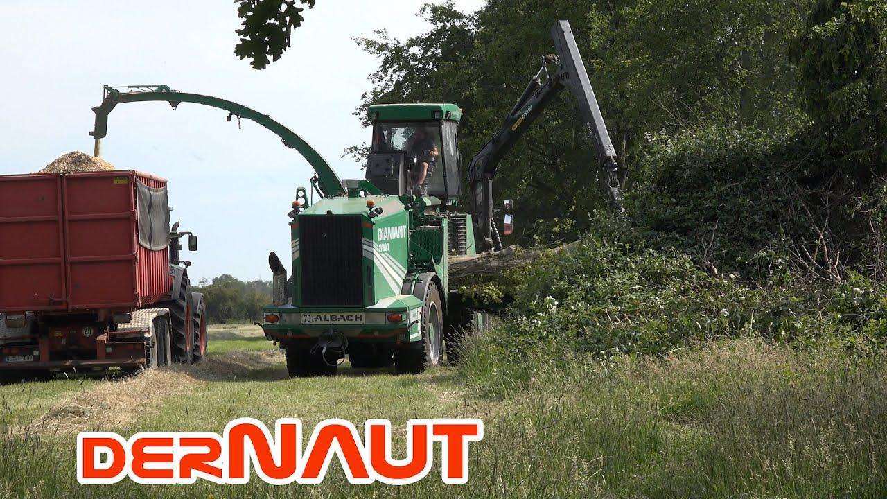 Der grüne Baumfresser: Hacker Albach Diamant 2000 | Free to use 4K footage - creative commons