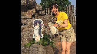 True Kemono Friend, Grape-kun