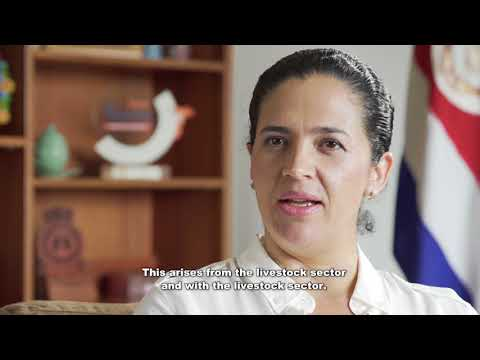 FIRM Project - Costa Rica leads sustainable livestock development